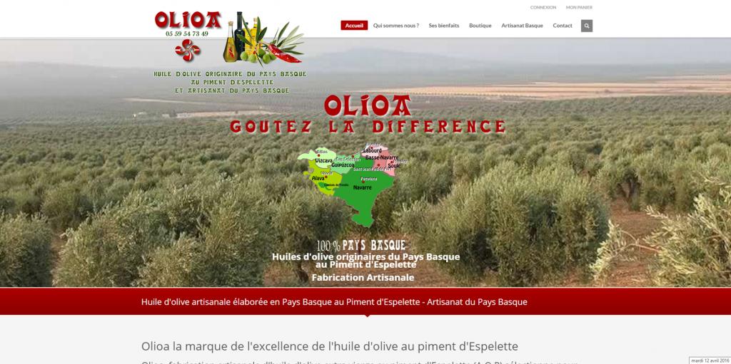 site-olioa-1024×511